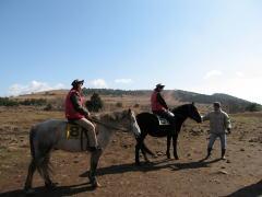 済州で乗馬体験